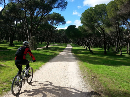 proinca-five-routes-to-enjoy-by-bike-in-madrid